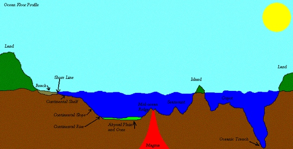 Mapping the ocean floor henrico 21 for 10 facts about the ocean floor