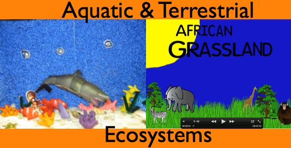 Aquatic & Terrestrial Ecosystems – 4530 | Henrico 21