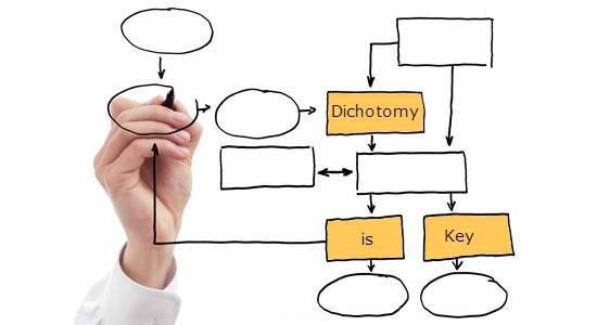 Dichotomy is Key – 7726