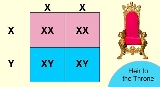 Pedigree chart critical thinking