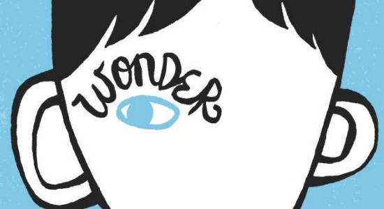 The Wonderful World of Wonder – 15MS401