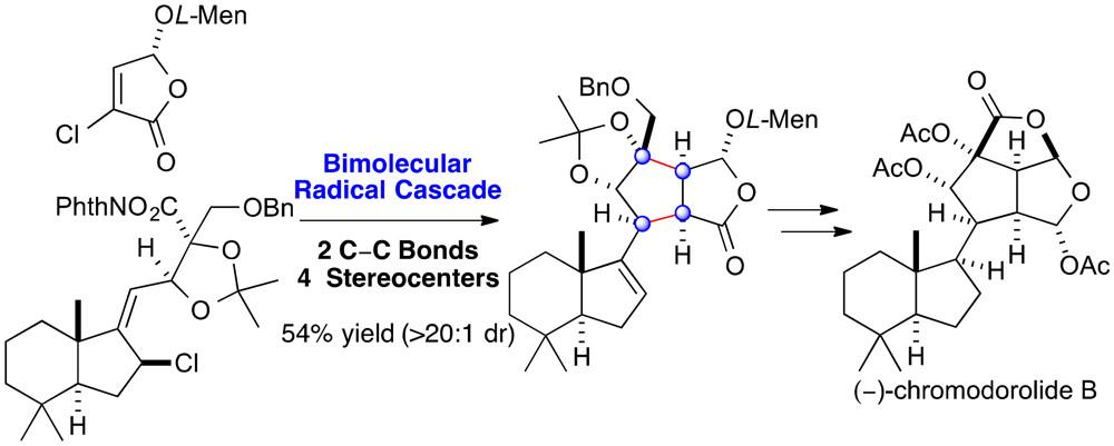bio organic chemistry pdf