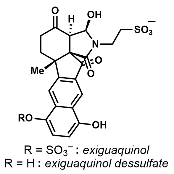 a-synthesis-of-exiguaquinol-dessulfate
