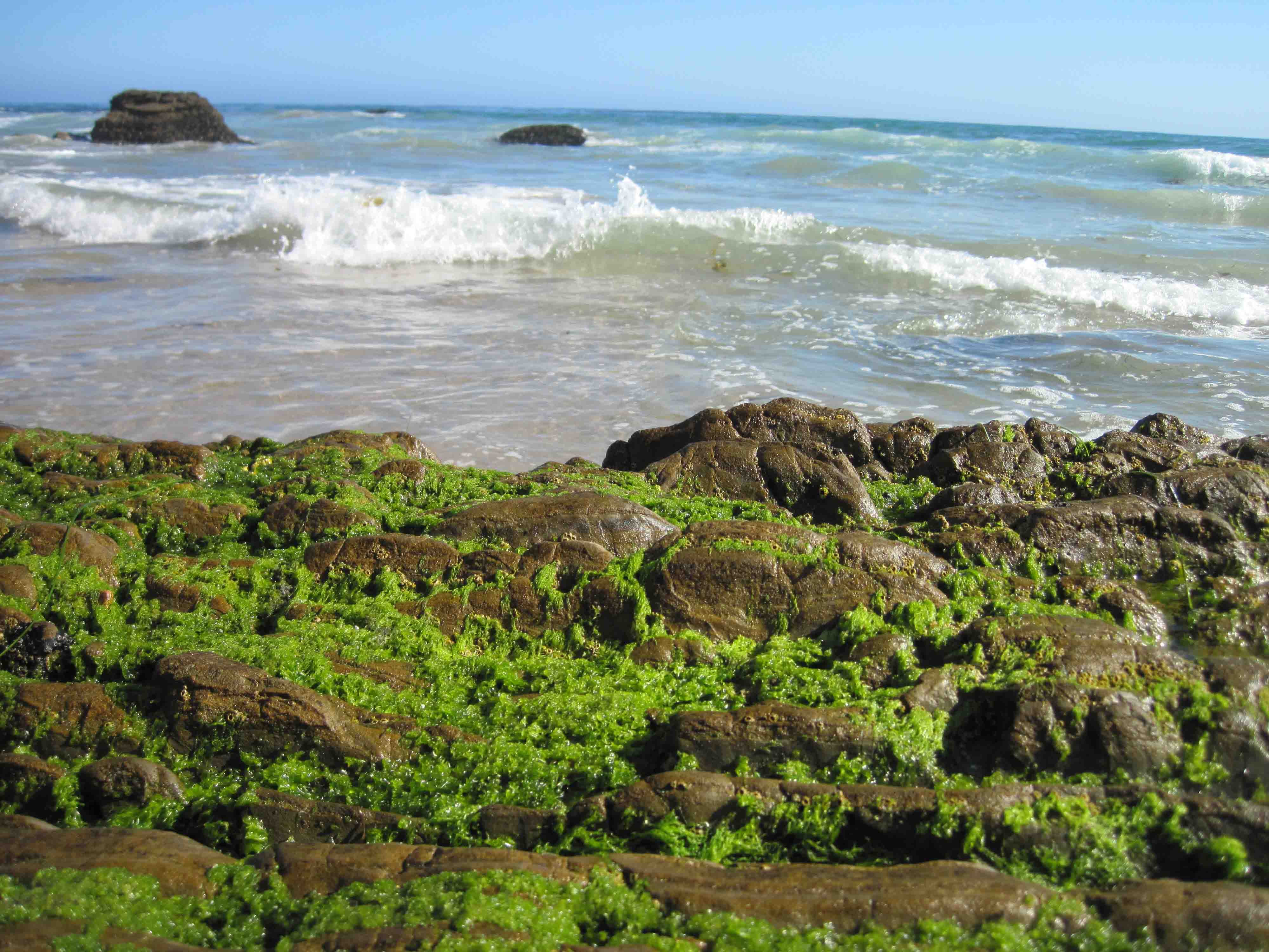 crystal_cove_12