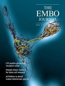 EMBOJ-cover
