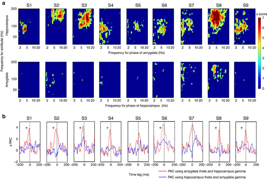 Amygdala-hippocampus directional PAC and phase lag analysis