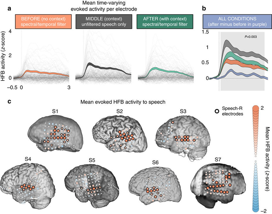 Brain Recordings in Relation to Speech