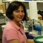 Rosemarie Vithayathil, PhD