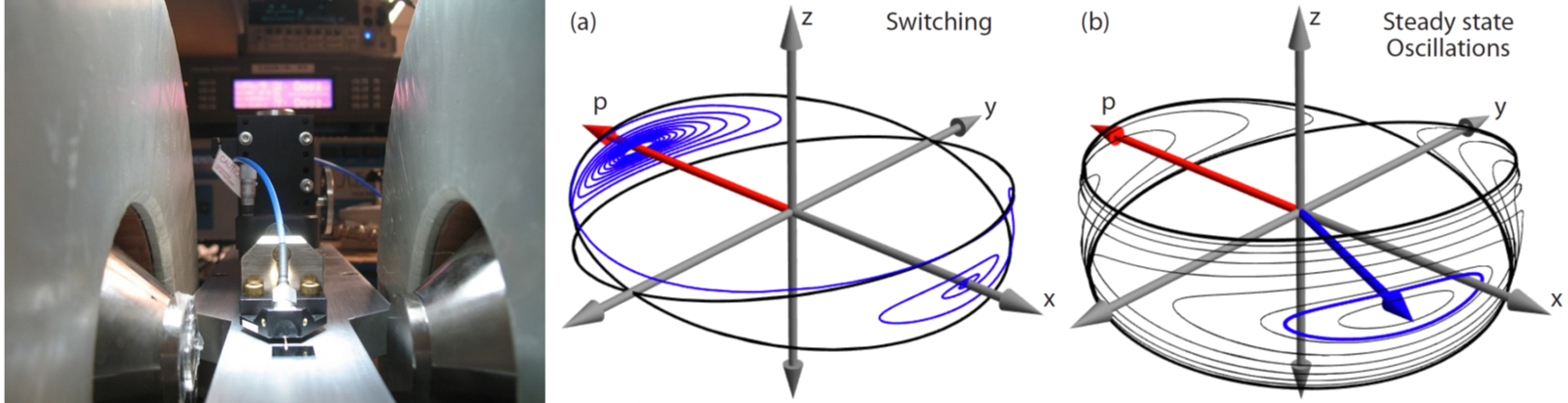 Ultrafast magneto-dynamics