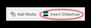 Insert Slideshow Button
