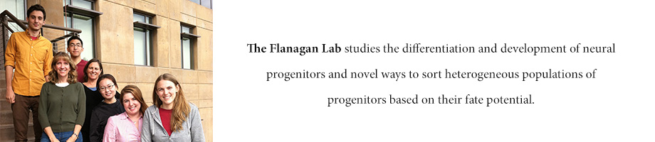 Flanagan Lab