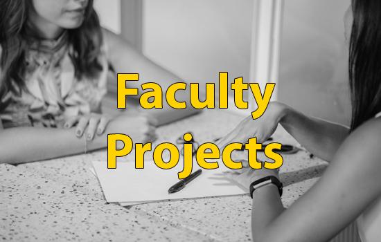 facultyprojs2