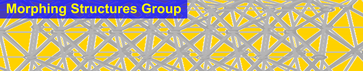 Morphing Structures Group