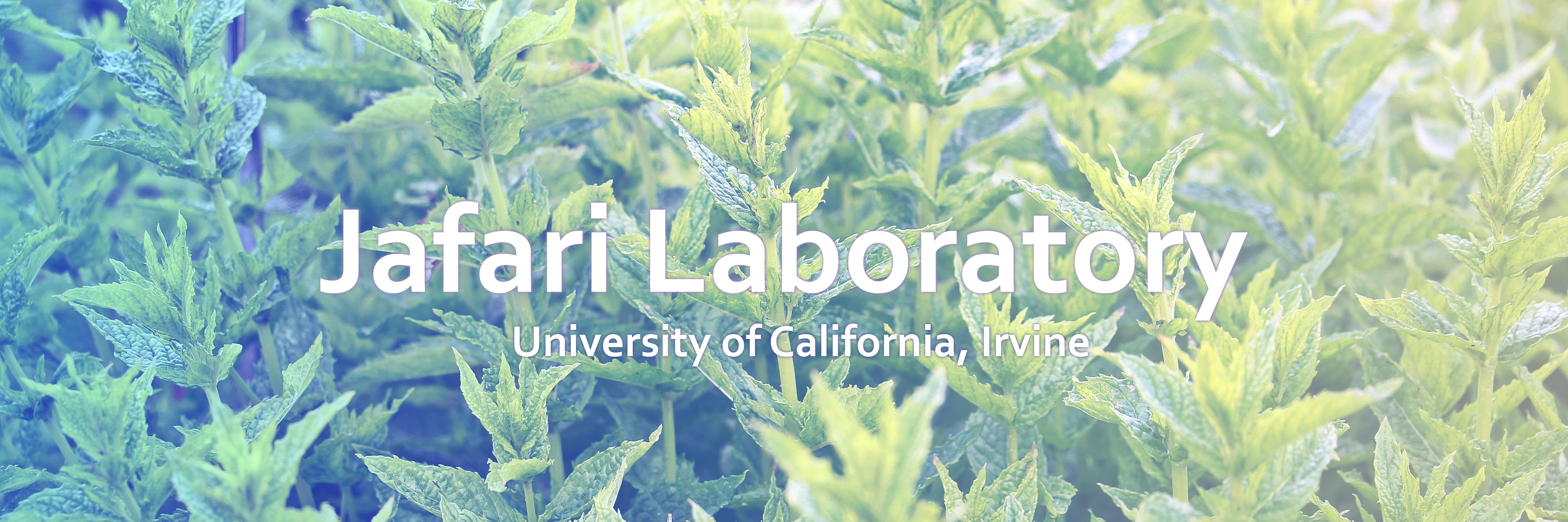 Jafari Laboratory