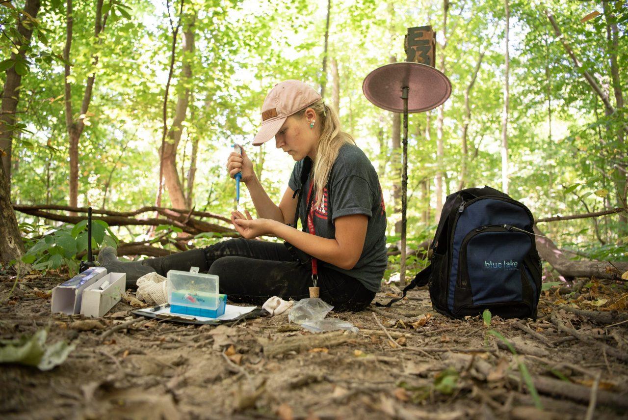 Ashley Tauber feeding a baby wren