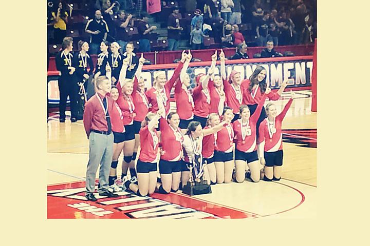 Deer Creek-Mackinaw High School volleyball team