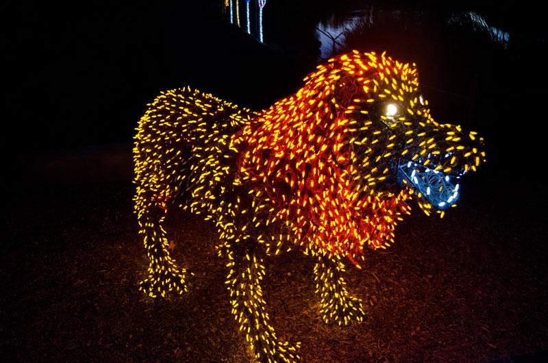 Phoenix Zoo Zoolights