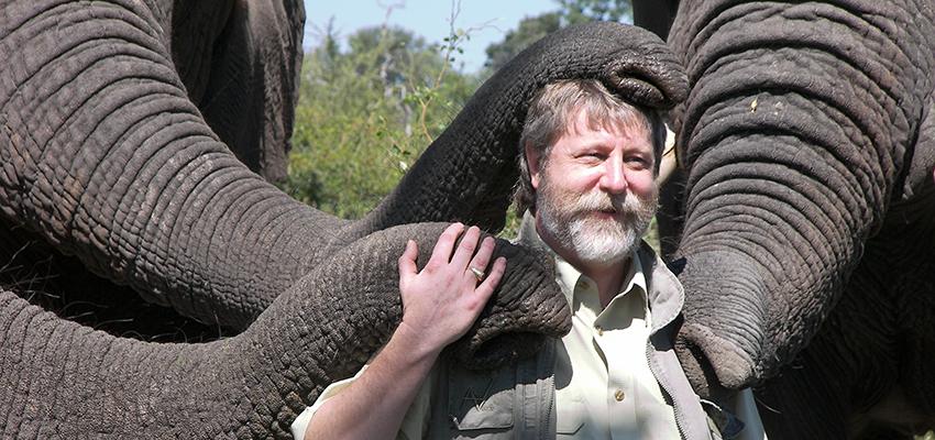 Michael Sailor with elephants