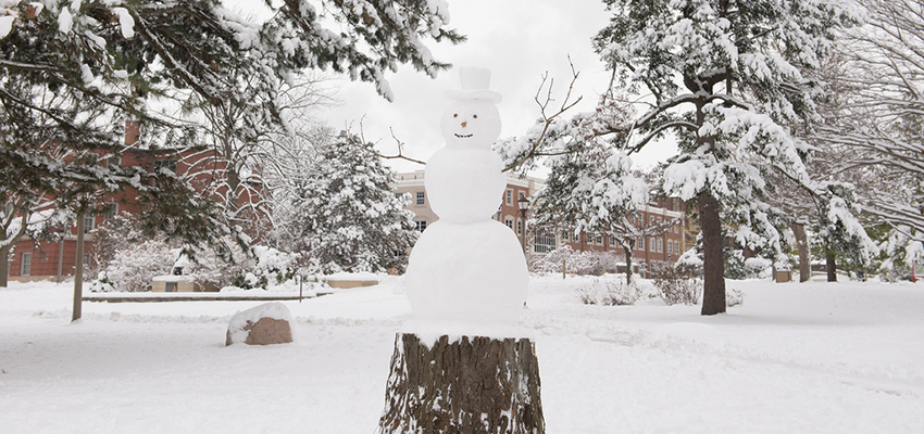 snowman on the Quad