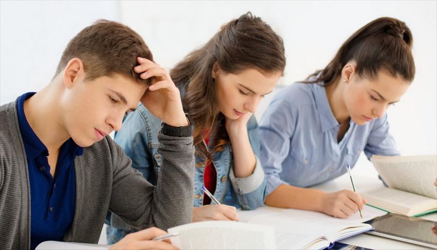 Students hard at study