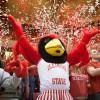 Reggie Redbird with student fans