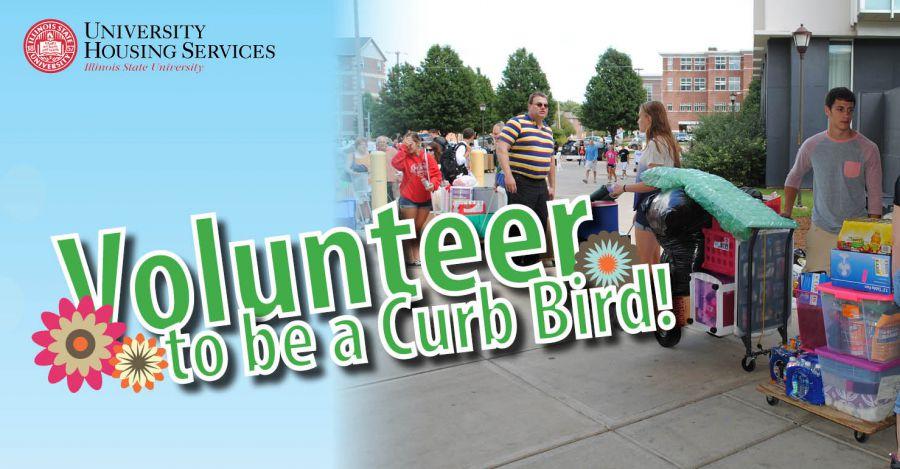 Volunteer Curb Bird graphic