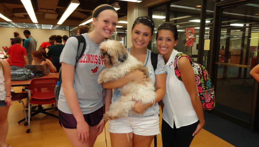 Students are all smiles posing with certified therapy dog George