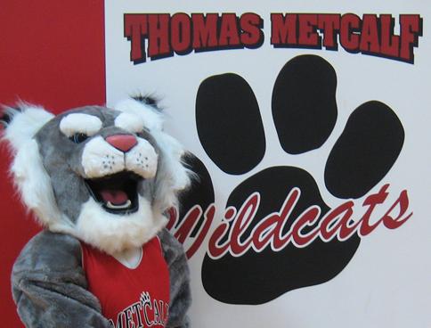 Metcalf school mascot