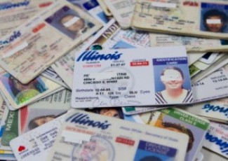 image of Illinois drivers licenses