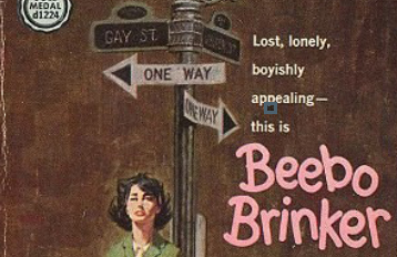 image form the book cover of Beebo Brinker