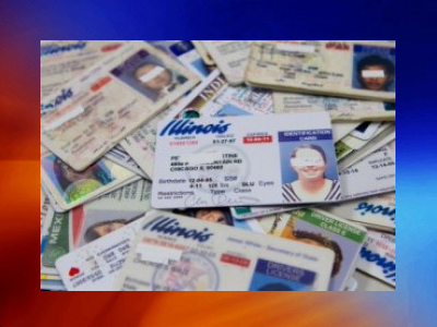 image of drivers licenses