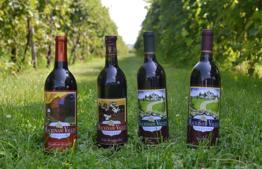 Mackinaw Valley Vineyard