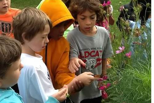 Students studying a butterfly in the Metcalf Garden.