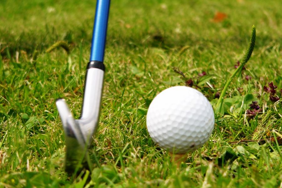 Golf ball and club in the grass.