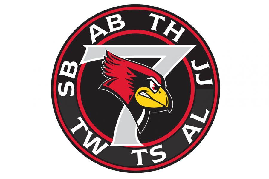 Redbird 7 patch
