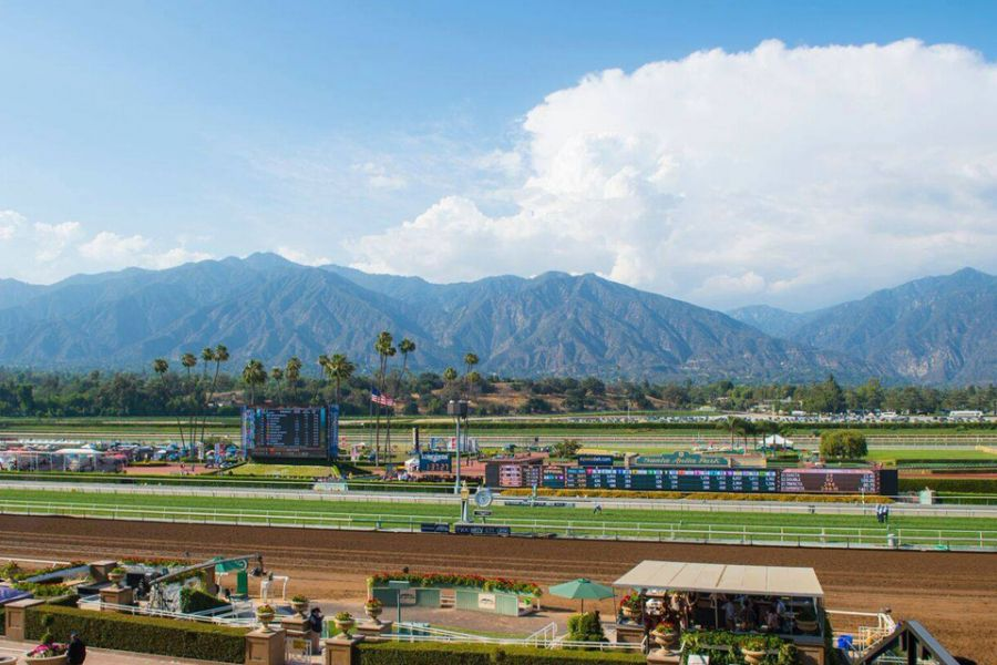 horse racetrack with mountains in background