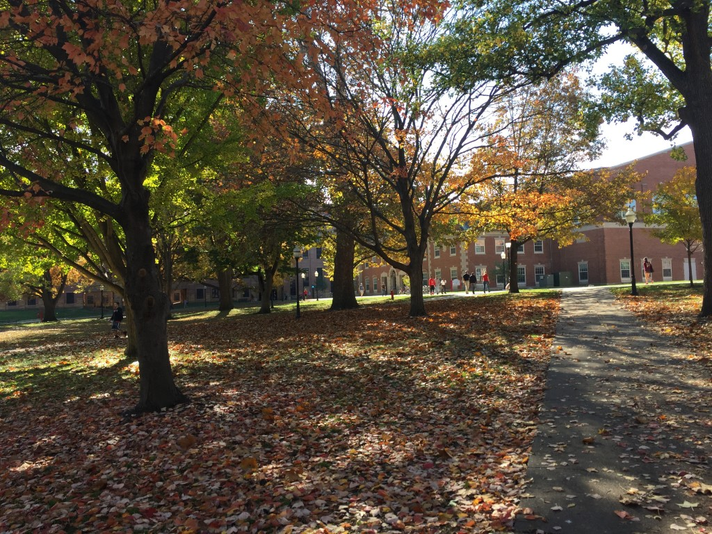image of Quad in fall