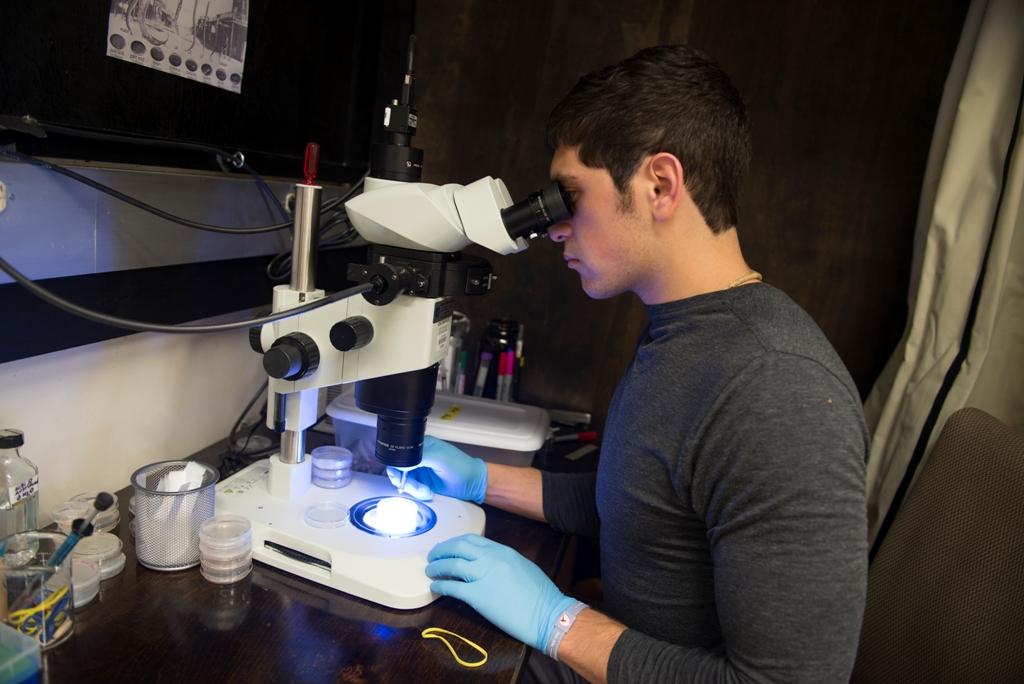 Moe Khalil in lab