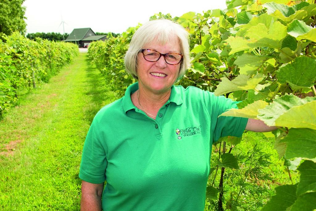 Mary (Mouser) Hofmann '76 in her vineyard in Carlock