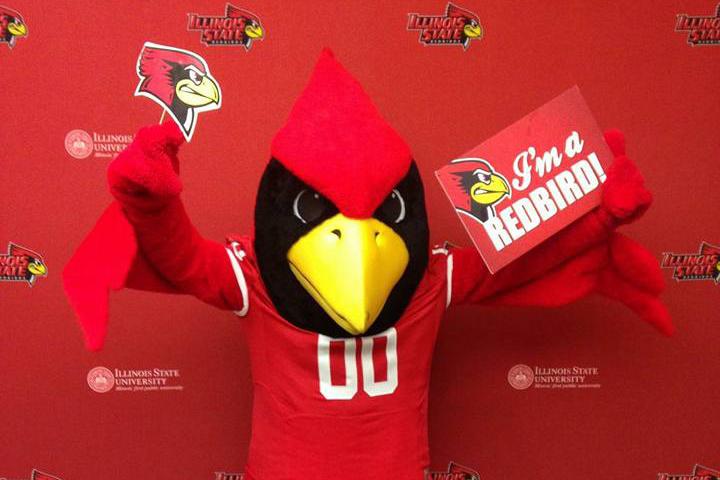 """Reggie Redbird holds """"I'm a Redbird"""" sign"""
