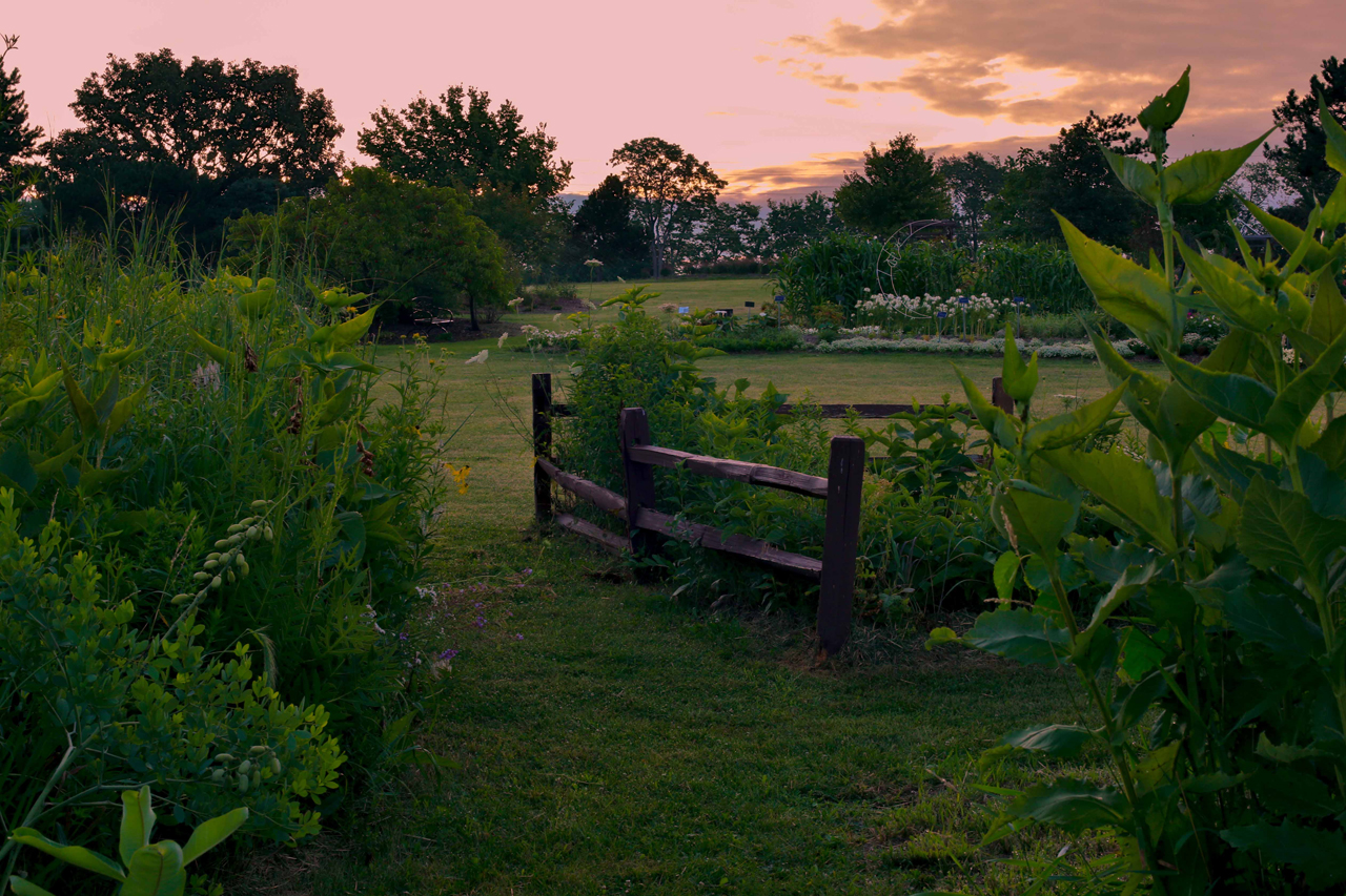 image oc Sunset at the Horticulture Center at Illinois State University.