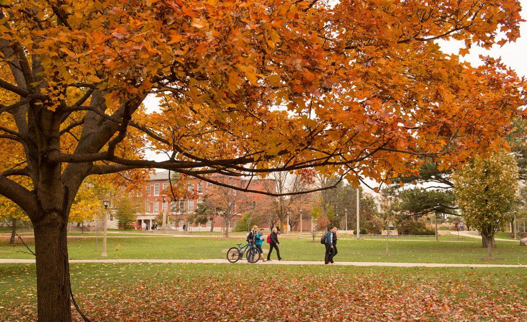 image of The Quad of Illinois State University