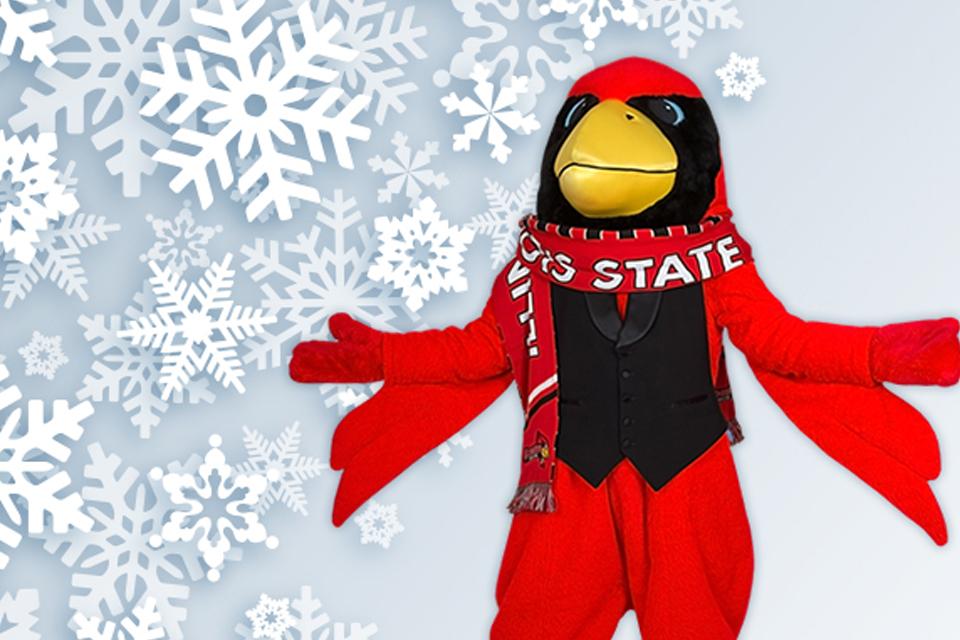 Reggie Redbird in snowfall