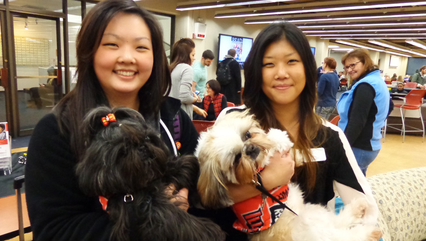 Therapy dogs and siblings