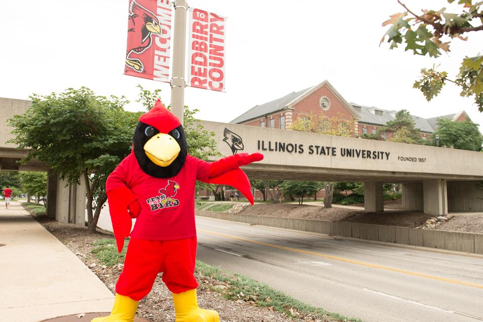Reggie in front of Illinois State bridge