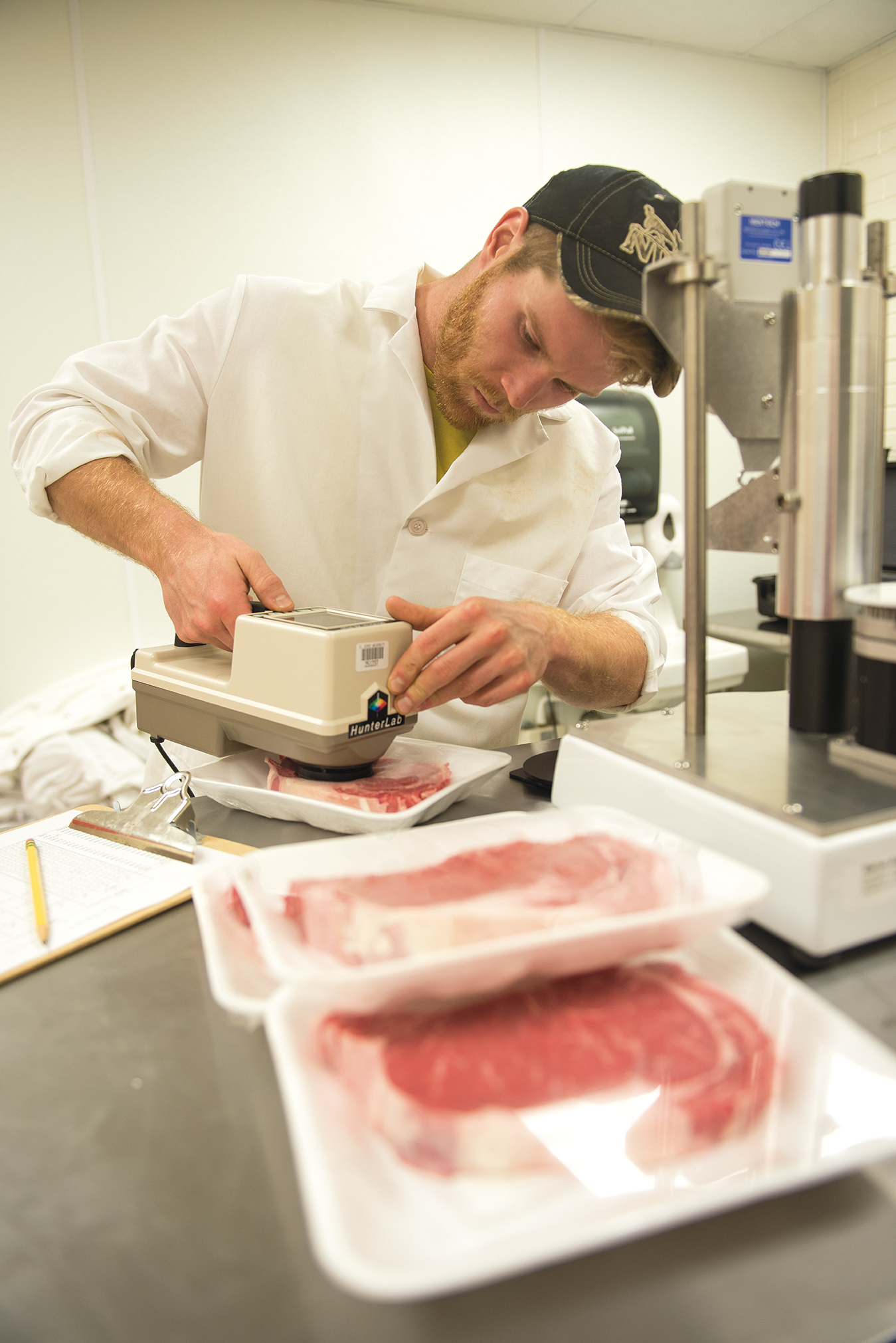 Parmenter uses a colorimeter to measure the color of the rib-eye steaks produced by the cattle. The researchers checked the steaks' color four times in seven days to measure the color changes the steaks would undergo in a retailer's case.
