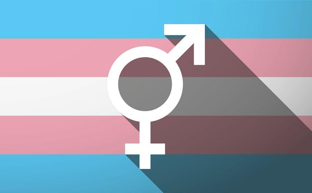 image of a transgender flag and symbol