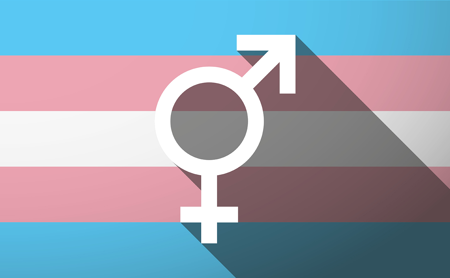 image of a transgender flag and symbol