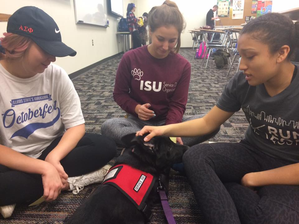 image of students with a service dog
