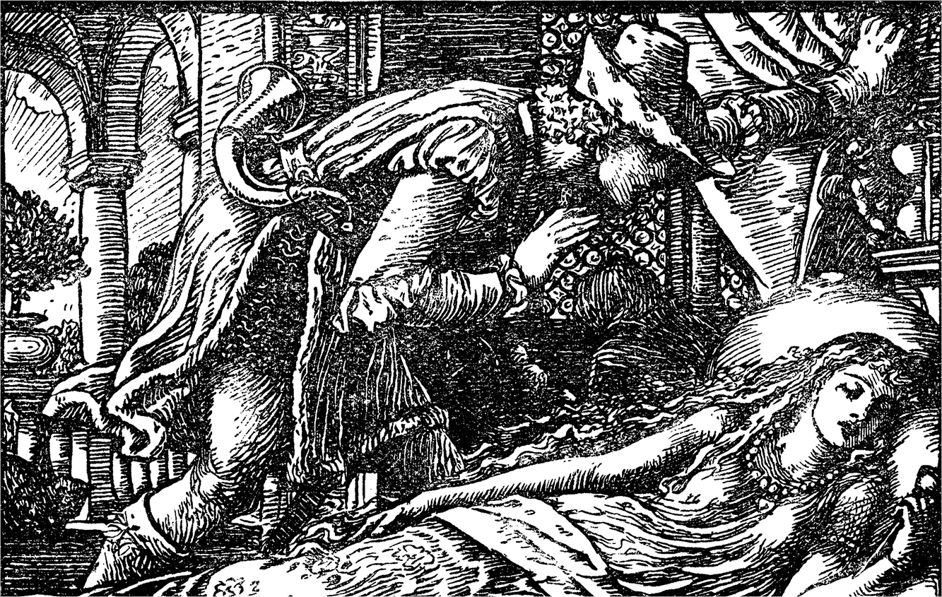 image from a Grimm's fairy tale of Sleeping Beauty